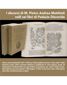 I discorsi di M. Pietro...